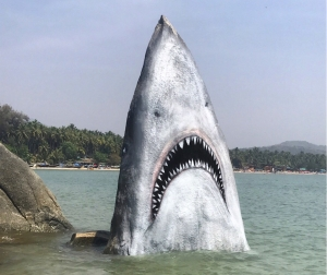 Stone Turned Into Great White Shark Jimmy Swift