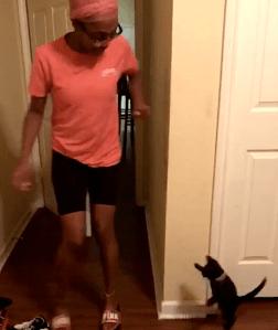Fierce Kitten Tries to Scare Her Human
