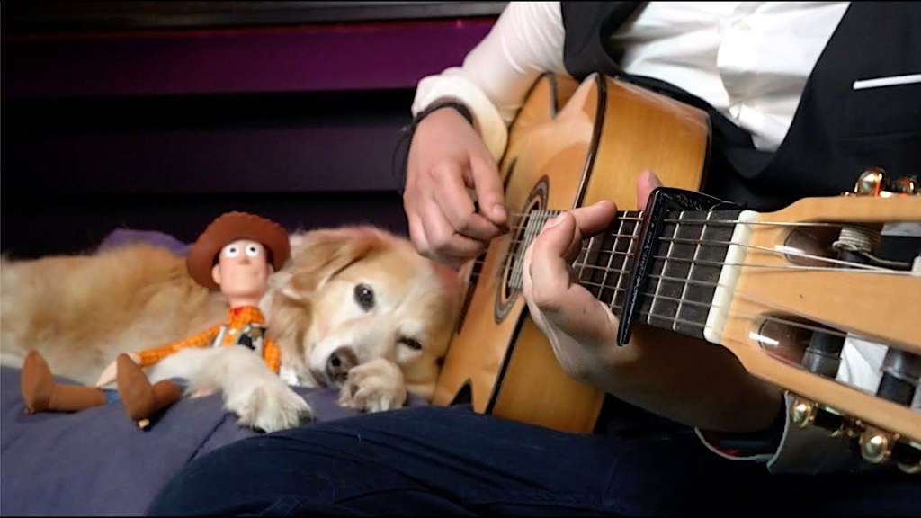 Youve Got a Friend in Me Acoustic Fingerstyle Dog Woody