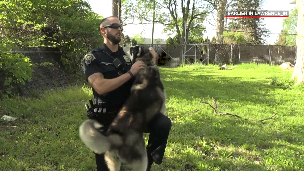 Indiana Police Officer Falls In Love With an Abandoned Dog