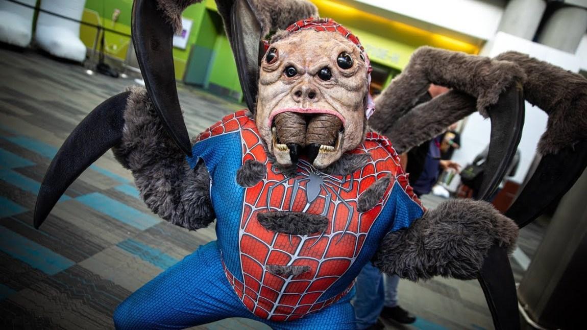 Literal Man Spider Cosplay