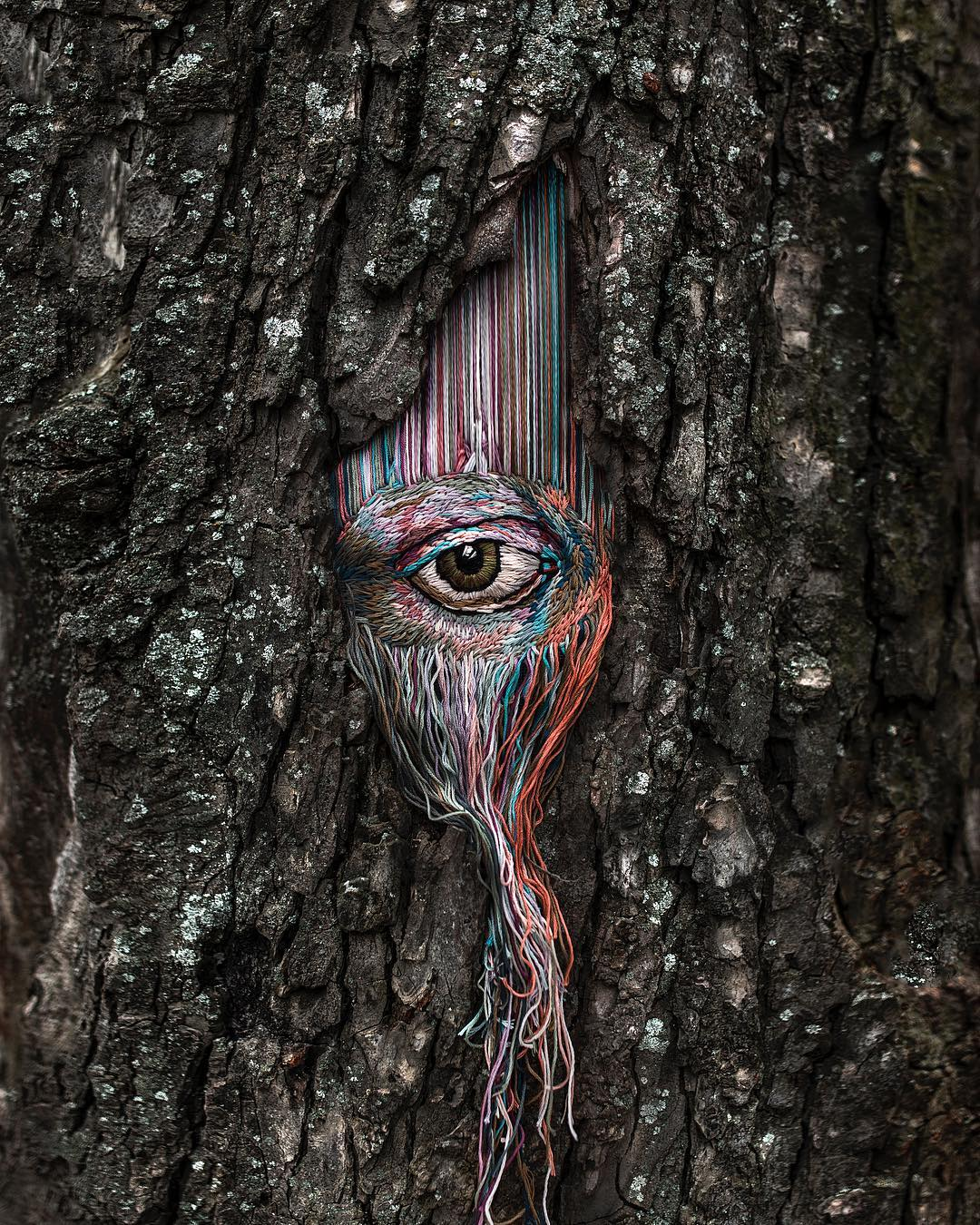 Beautiful Patterns Embroidered Into Crevices of Trees