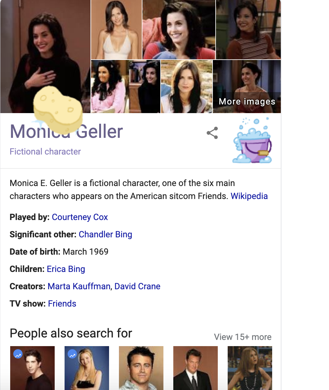 Friends Monica Geller Squeaky Clean