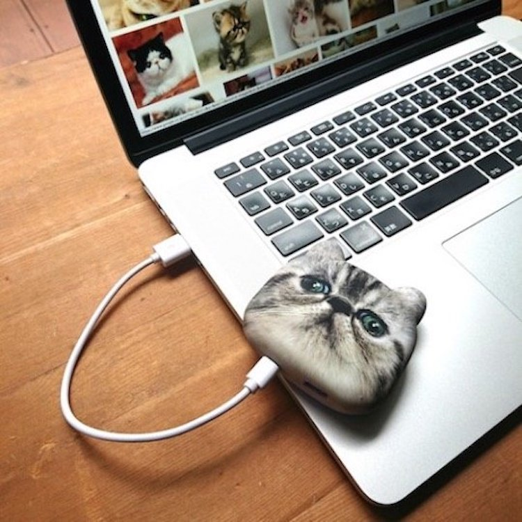 Adorably Realistic Cat Head USB Phone Chargers
