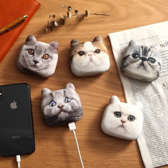 Cat Head Chargers