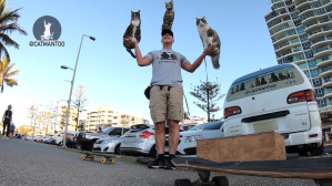 The Human Cat Tree