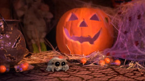 Lucas the Spider The Imposter
