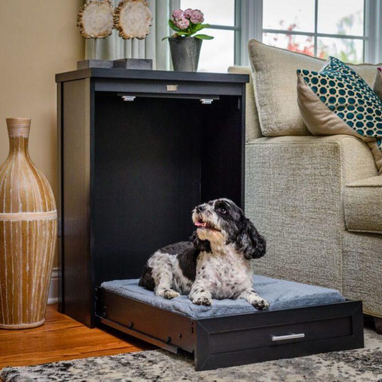 Dog Murphy Bed Brown