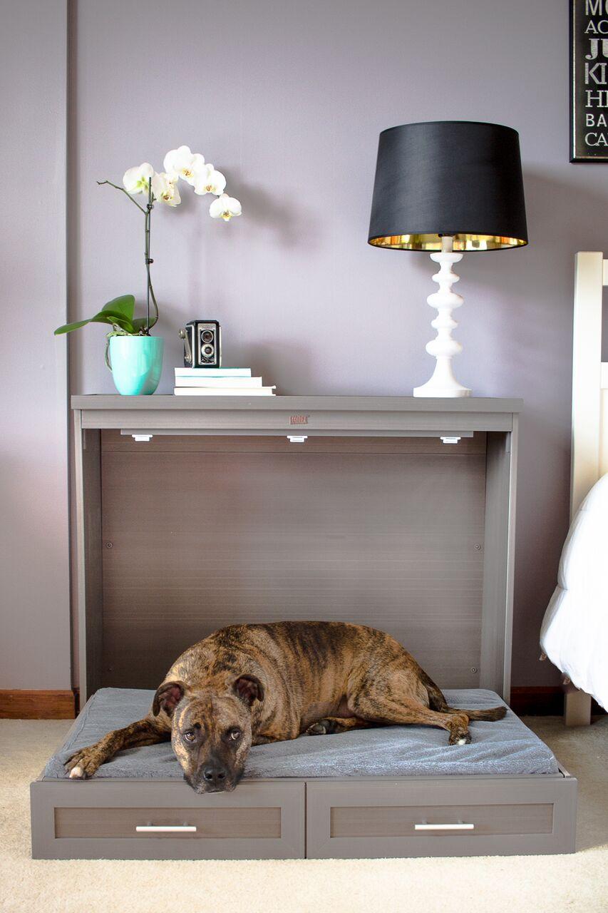 Dog Murphy Bed Large