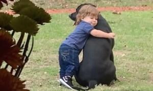Little Boy Hugs Dog