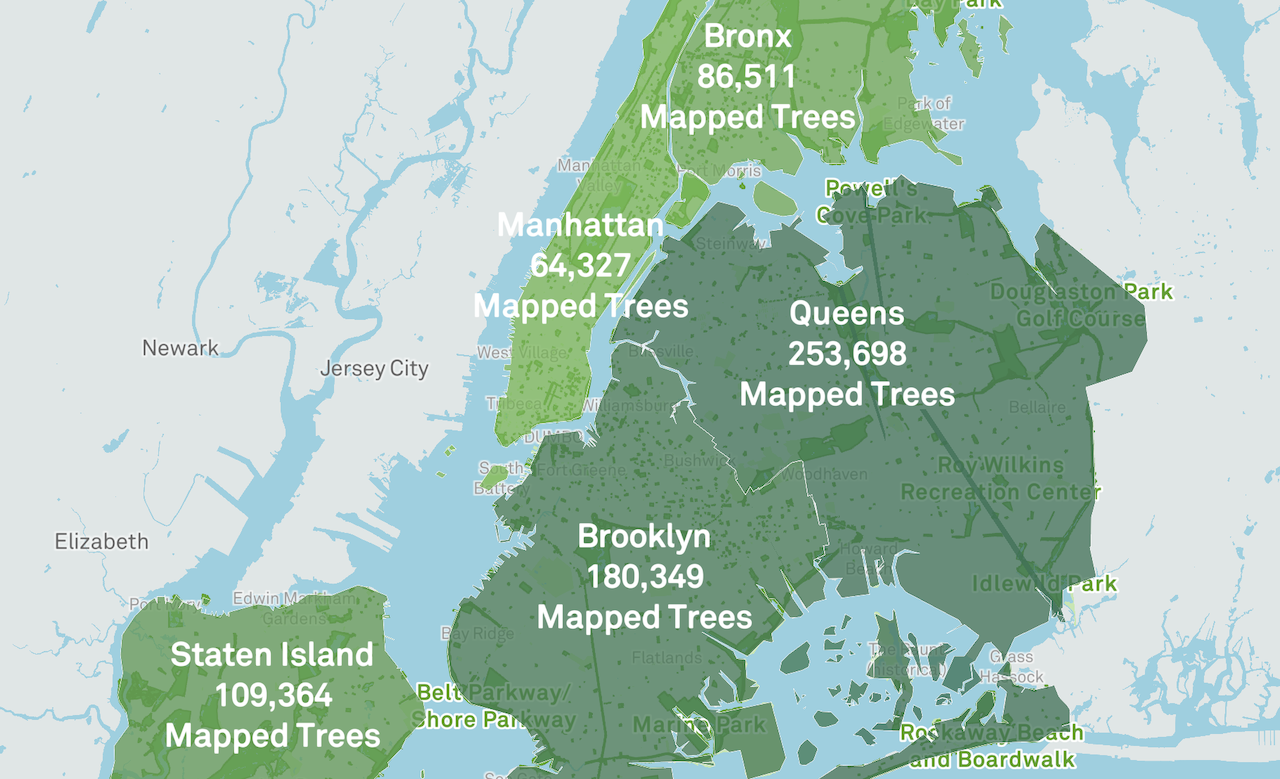 An Interactive Map That Shows All the Public Trees in Each Neighborhood of New York City's Five Boroughs