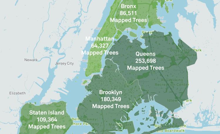 New York City Street Tree Map
