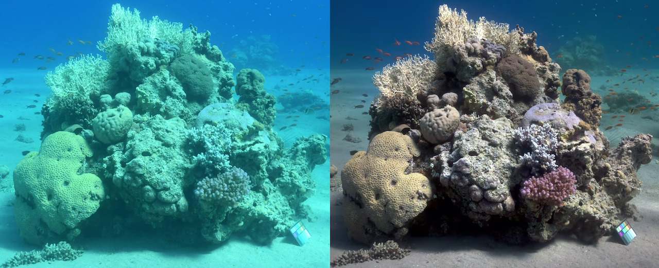 An Oceanographer's Amazing Algorithm That Removes Blue-Green Visual Distortion From Underwater Photos