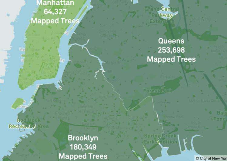 Tree Map Overview Brooklyn Queens Manhattan