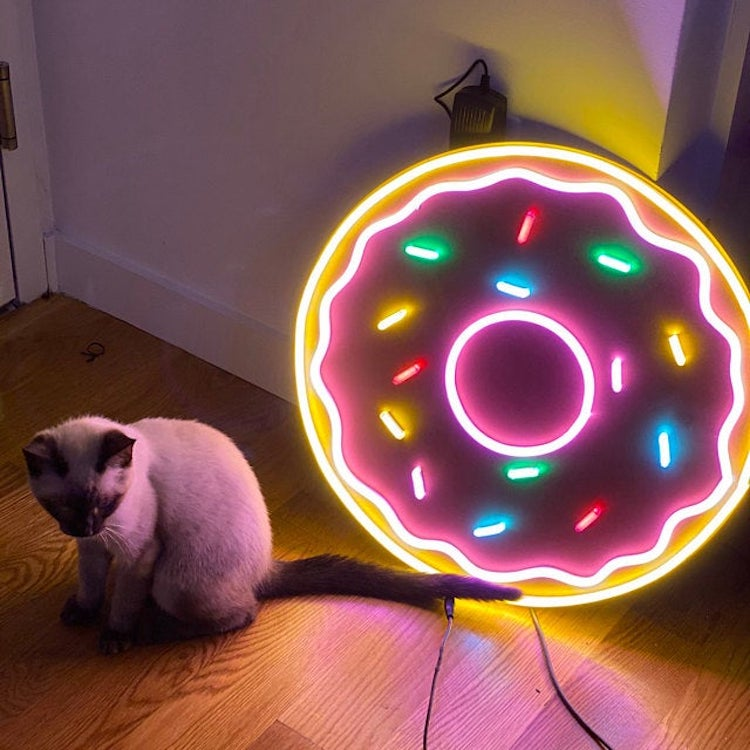Cat and Neon Doughnut