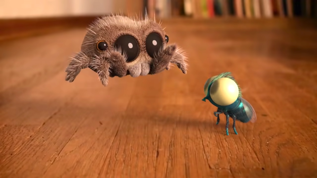 Lucas the Jumping Spider