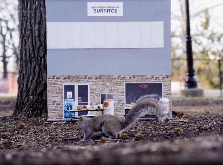 Squirrel Burrito Restaurant