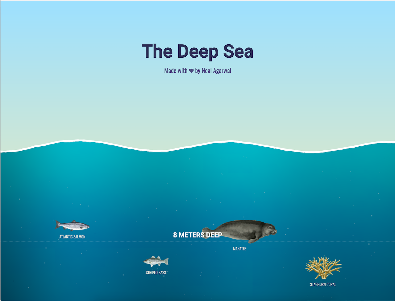 Fascinating Visual Deep Dive That Lets You Scroll Down to See What Lives at Various Depths of the Sea