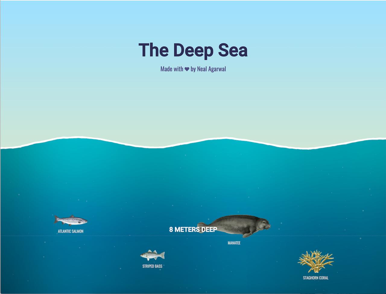 Situs melihat hewan laut, Lagi Gabut? Website Ini Bisa Menemani Saat Gabut Pastinya Bikin Terhibur + Nambah Ilmu