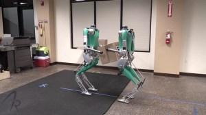 Twin Bipedal Robots