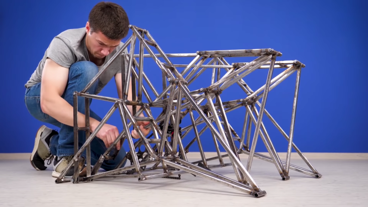 Walking Bicycle Strandbeest Connected
