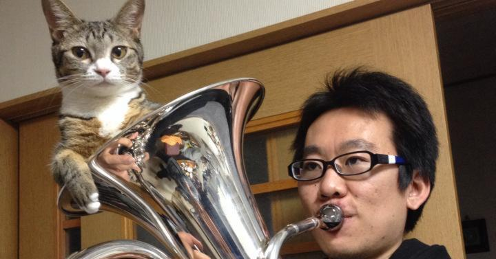 Drowsy Cat Napping Inside Her Human's Brass Horn Gets a Rude Awakening When He Starts to Play