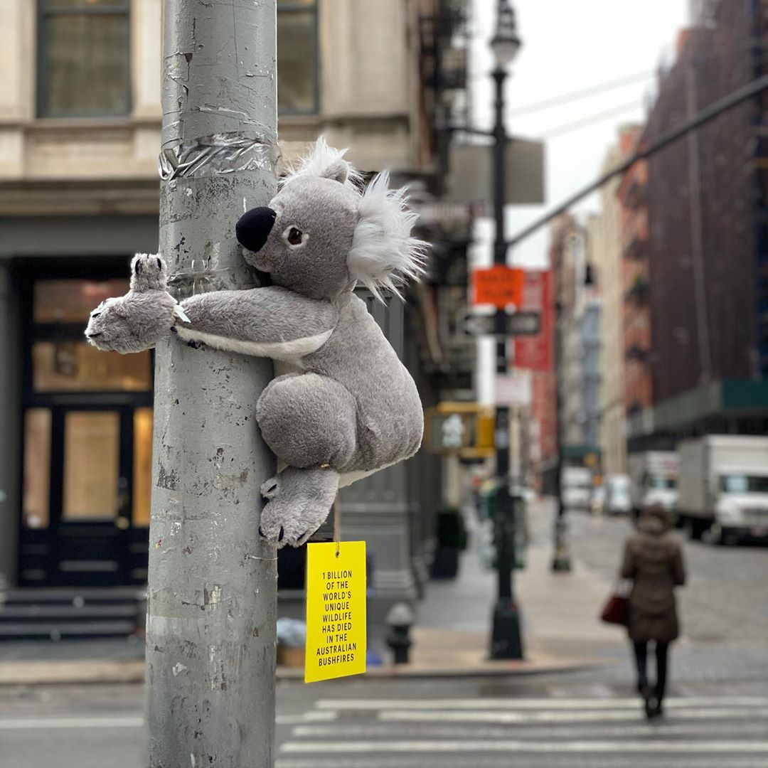 Plush Koala Bears Hang on Poles Around NYC With a QR Code to Help Animals Injured in the Australia Fires