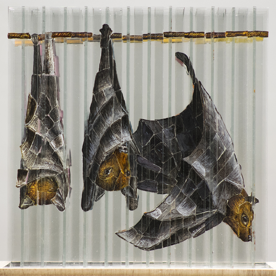 What Its Like to Be Bats