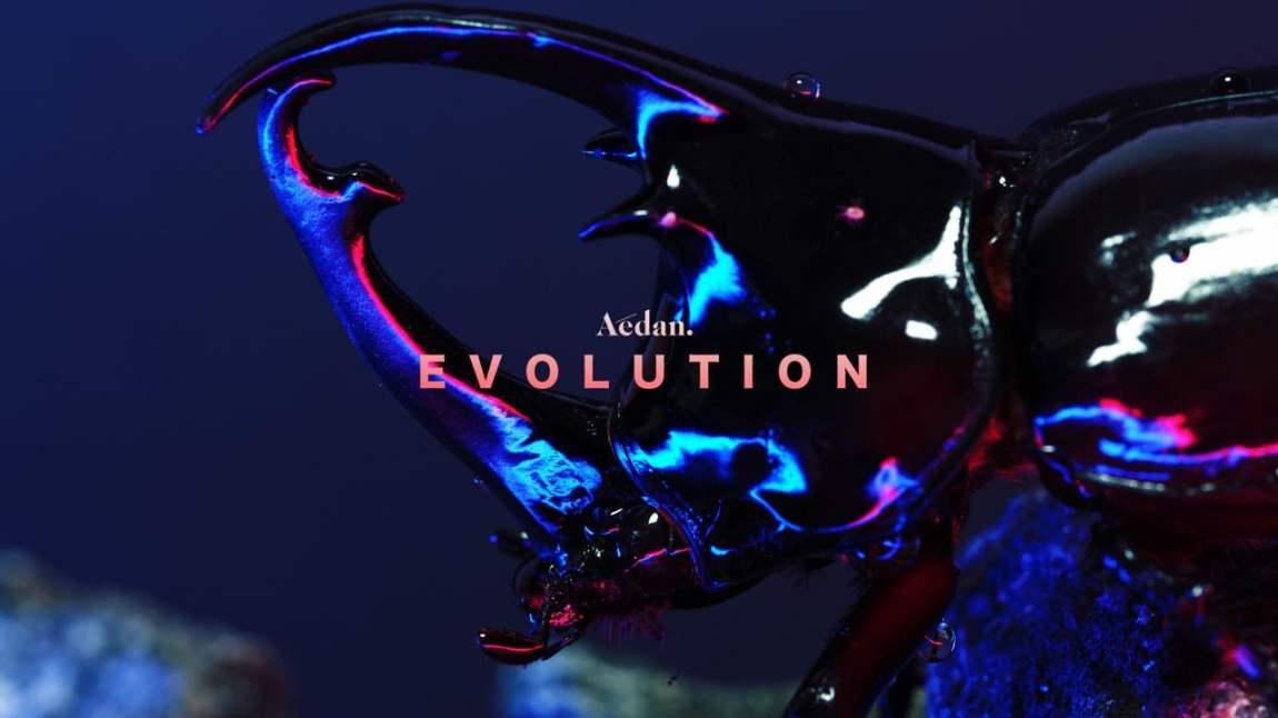 Aedan Evolution Video