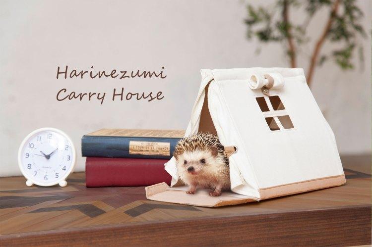 Hedgehog Carry House Alarm