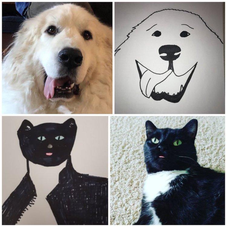 Wisconsin Humane Society Fundraising Drawing Pets