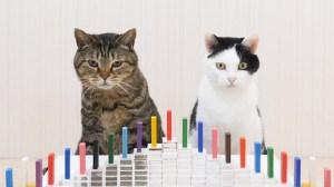 Cats Dominoes