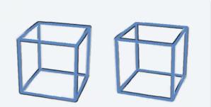 Reverse Phi Cube Illusion
