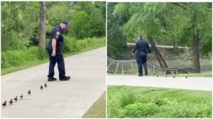 Houston Police Escort Ducklings