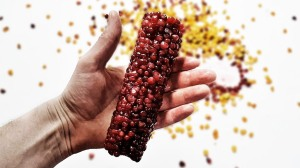 Replacing Corn Kernels With Pomegranate Seeds Timelapse