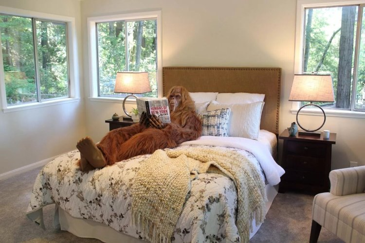 Bigfoot Sells Felton Home Bedroom
