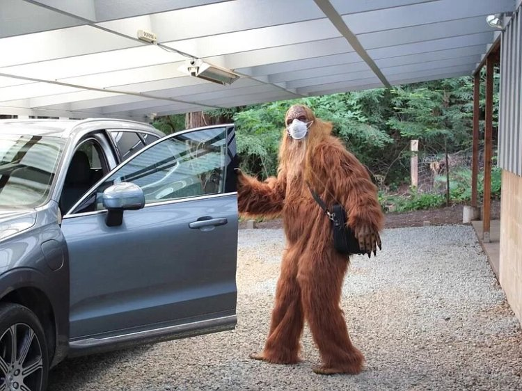 Bigfoot Sells Felton Home Garage