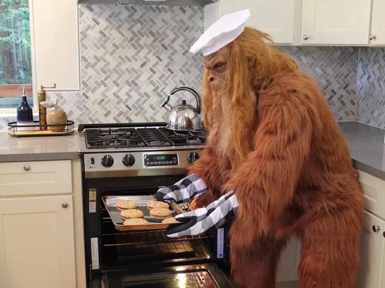 Bigfoot Sells Felton Home Kitchen
