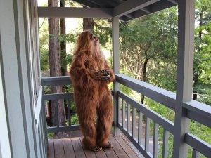 Bigfoot Sells Felton Home Porch