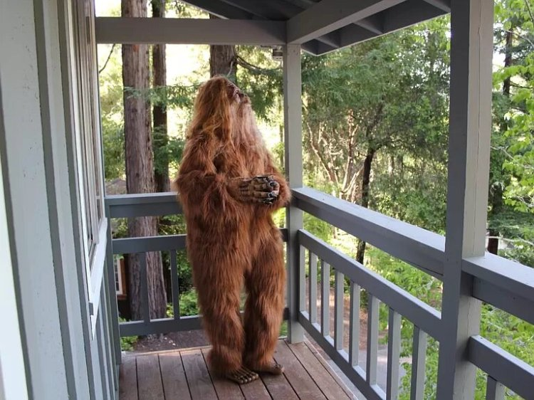Bigfoot Sells Felton Home Porch