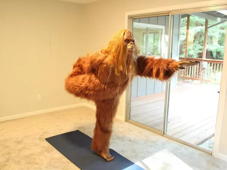 Bigfoot Sells Felton Home Yoga Room