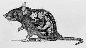 Paul Jackson Mouse Inner Workings