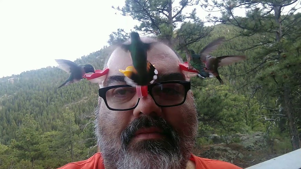 Colorado Man Attaches Tiny Hummingbird Feeders to His Glasses For a Close Up View of the Birds