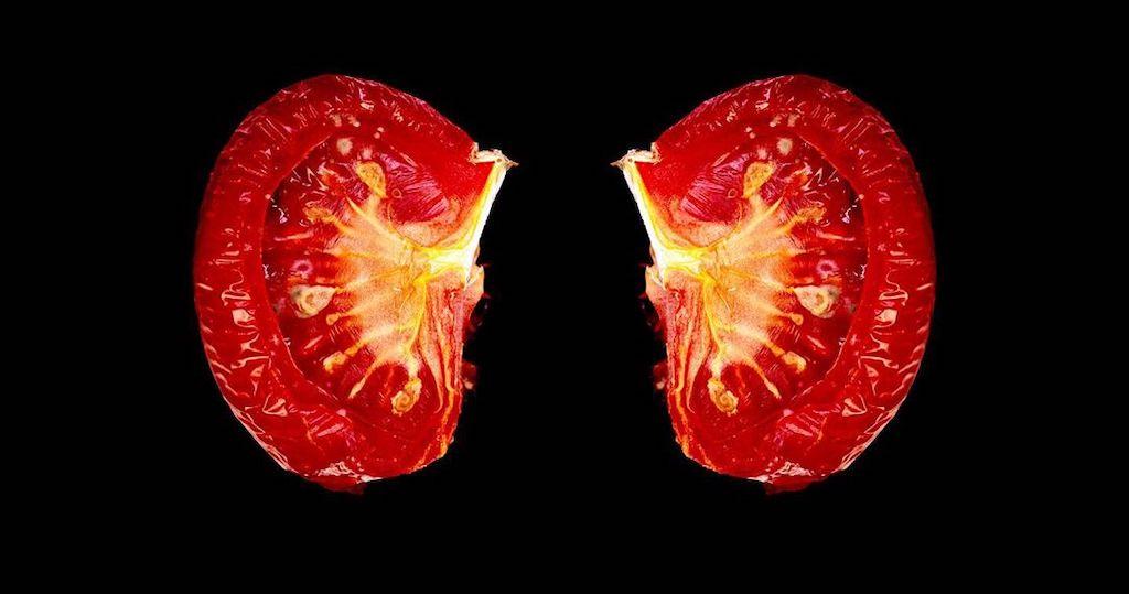 Tomato Lungs Thomas Blanchard