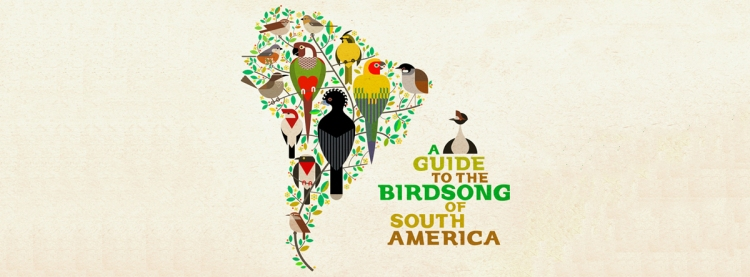 A Guide to the Birdsong of South America