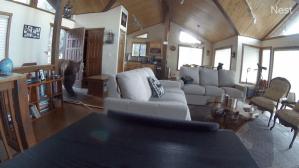 Bear Breaks in Cabin After Knocking Down the Door