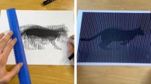 Nathan Cox Illusions