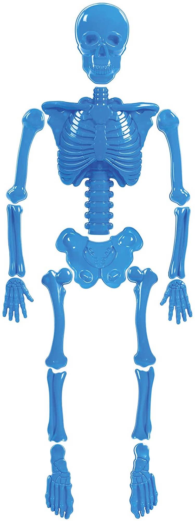 Skeleton Sand Mold Full Body