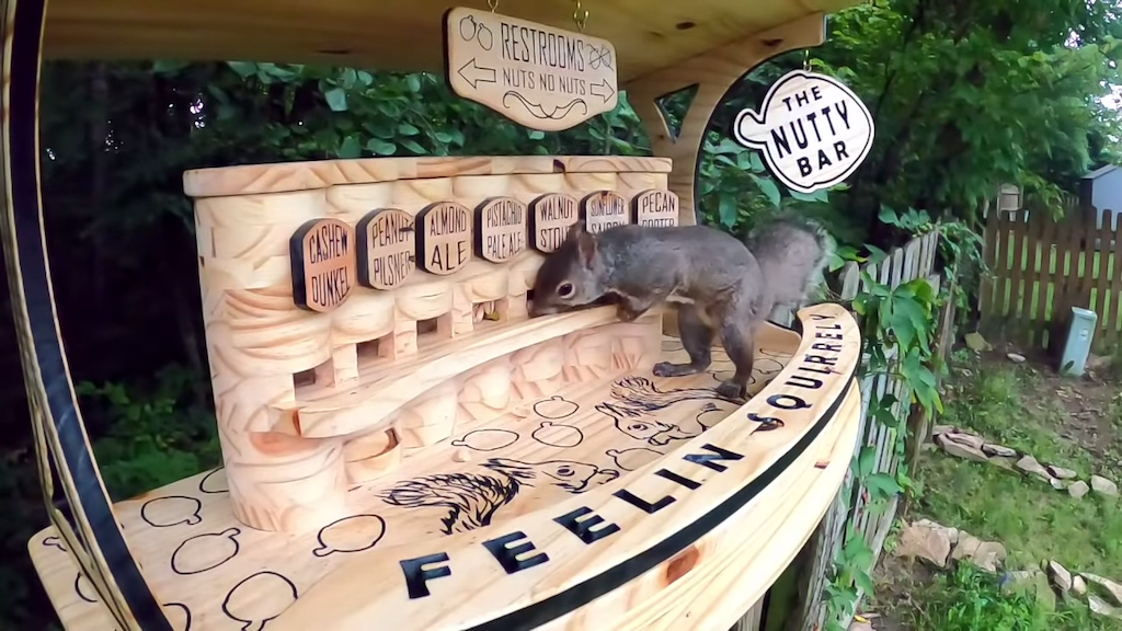 The Nutty Bar for Squirrels
