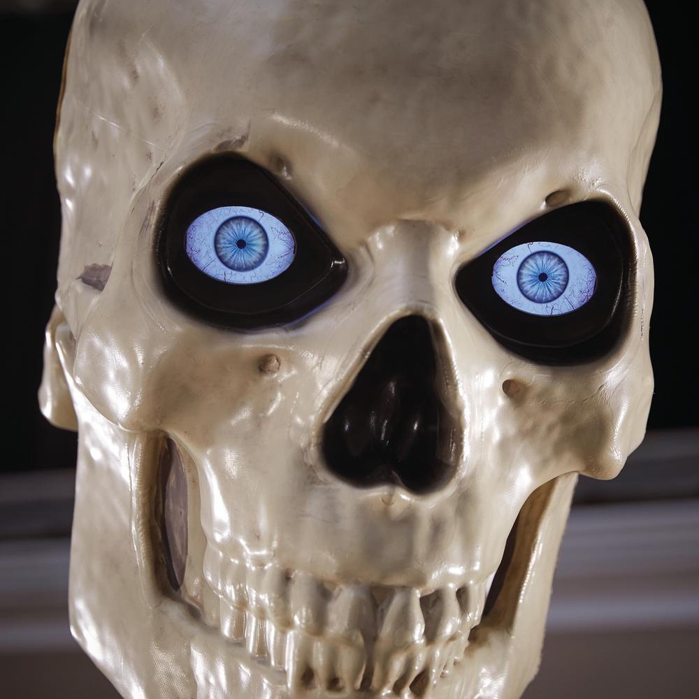 12 Foot Skeleton Face